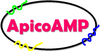 Logo for ApicoAMP